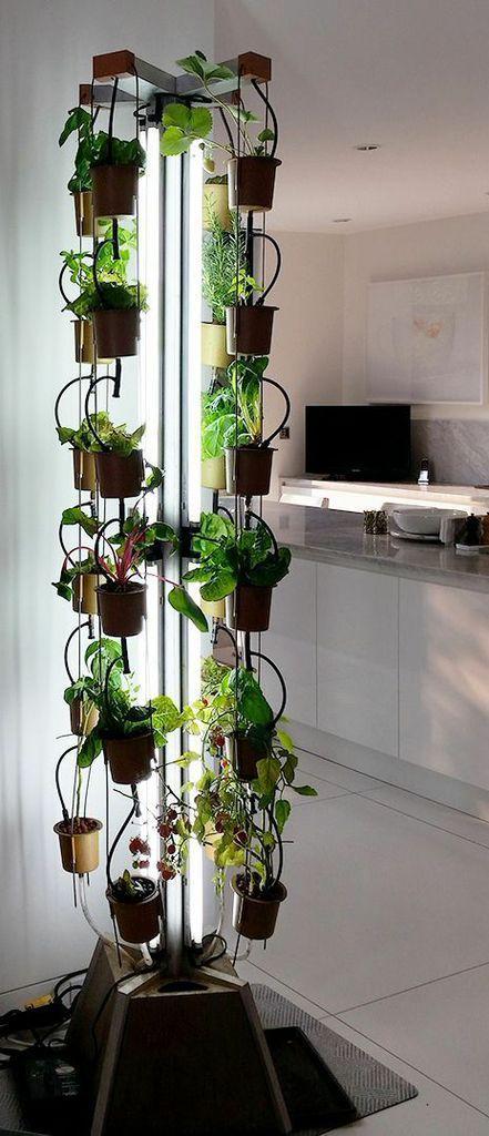 Countertop garden indoor gardening food and kitchen page 9 indoor gardening workwithnaturefo