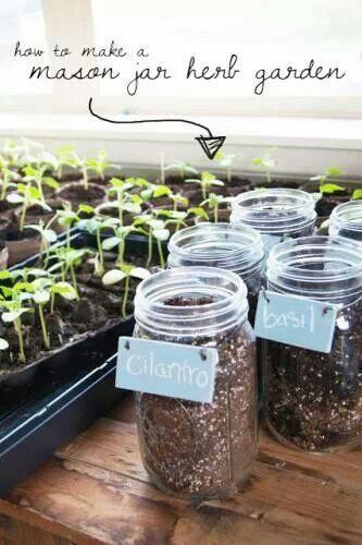 Do It Yourself Mason Jar Herb Yard Countertop Garden